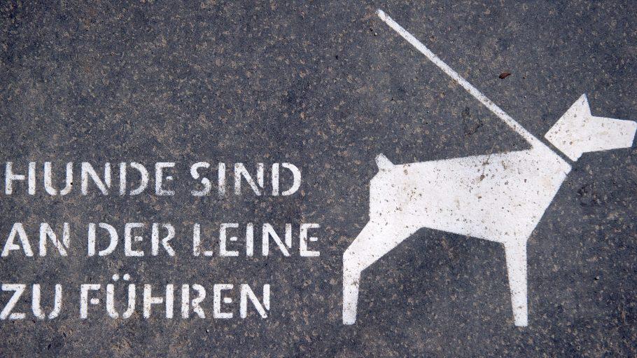 Künftig müssen Hunde nicht nur auf Gehwegen an die Leine.