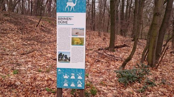Im nördlichen Teil des Areals stößt man eher unvermittelt auf dieses Hinweisschild, das über den namensgebenden Herzberg, eine Binnendüne, informiert.