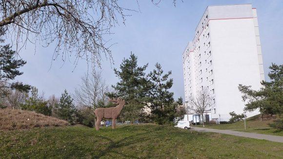 Viele sanierte und ein paar unsanierte Neubauten, drum herum viel Grün: So sieht es nicht nur an der Ecke Havemann-/Schorfheidestraße aus.