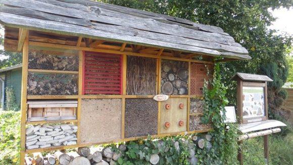 Mit dem Insektenhotel fing alles an.
