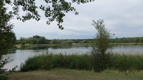 Natur pur: Die Kaulsdorfer Seen.