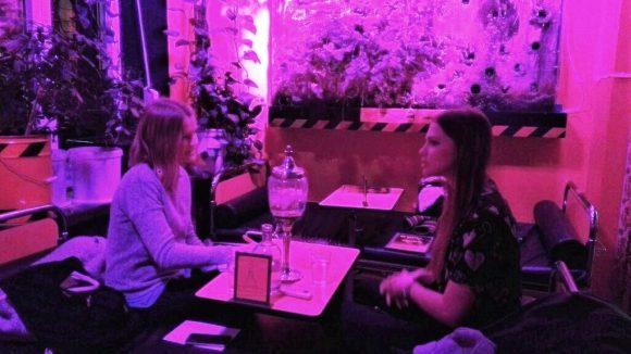 Nettes Treffen in schräger Location: Pinkes Licht in der Zyankali-Bar in Berlin. ©QIEZ