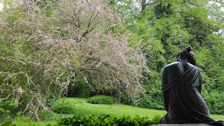 Freuen wir uns mit der jungen Dame auf den Frühling und die Höhepunkte des Lenné-Jahres im Bezirk Steglitz-Zehlendorf!