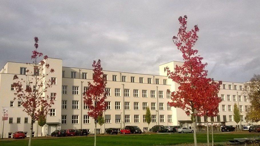 Farbenfroher Herbst vor dem strahlend weißen Gebäude der Phorms Schule in der ehemaligen McNair-Kaserne.