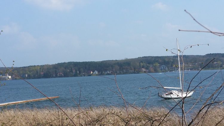 Naherholung am westlichen Ufer des Scharmützelsees. Zu Fuß circa zehn Minuten vom Resort entfernt.