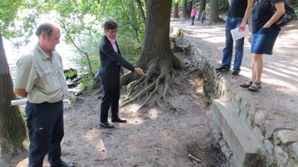 Staatssekretär Gaebler begutachtet ein gegrabenes Loch.