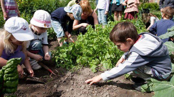 Einen echten Stadtgarten für Klein und Groß soll es bald auch in Marienfelde geben.