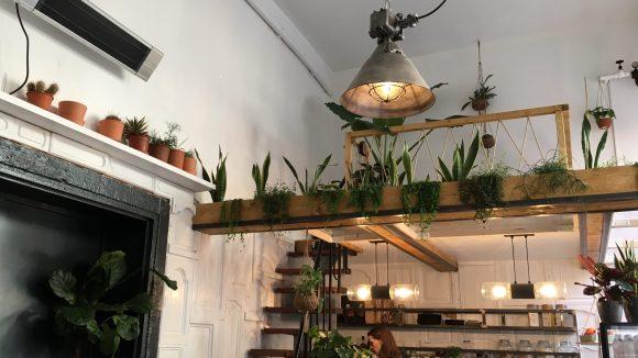 Am Counter wird alles für dich zubereitet und über eine kleine Treppe gelangst du zu einem extra Platz mit Couch. ©Qiez