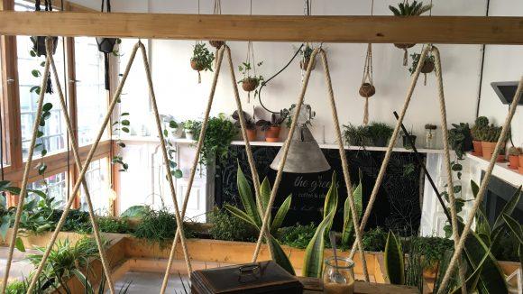 Unsere Aussicht auf ganz viel Grün. Aus einer Soundbox kommt übrigens Vogelgezwitscher...©Qiez