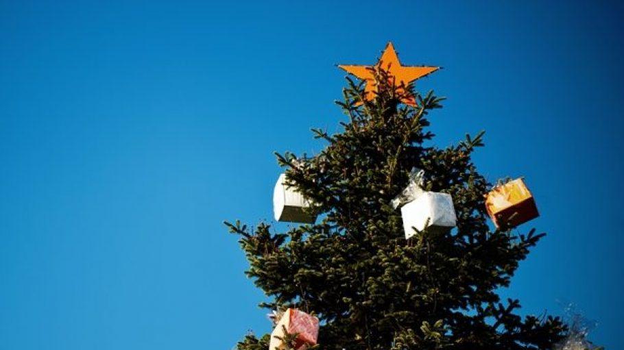 Ab dem ersten Adventswochenende ragen auch in Lichtenrade wieder schick geschmückte Weihnachtsbäume in die Höhe.
