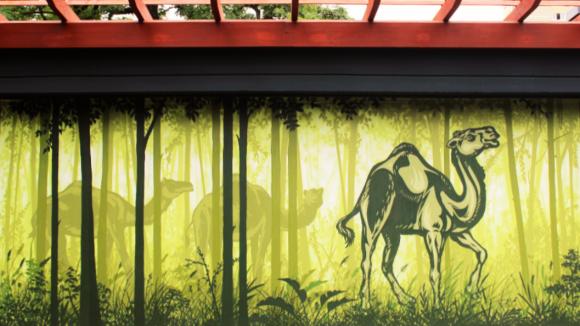 Wildnis-Feeling im Tierpark. Auch die Wände bekamen einen neuen Anstrich. ©Juliane Straub