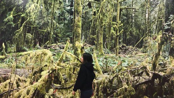 Wir finden uns bei der Ausstellung in Juergen Tellers besonders grünen Wald wieder. ©Almendra Almanza