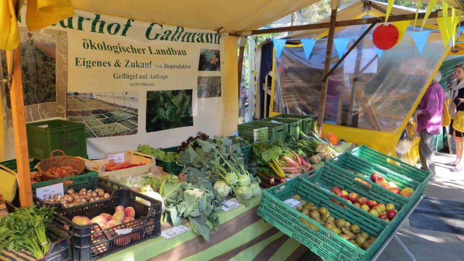 Ökologisch erzeugtes Gemüse gibt es jetzt wöchentlich vor dem Bahnhof Onkel Toms Hütte.