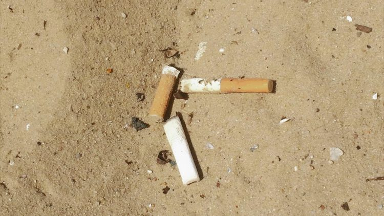 Zigarettenkippen am Strandbad Wannsee