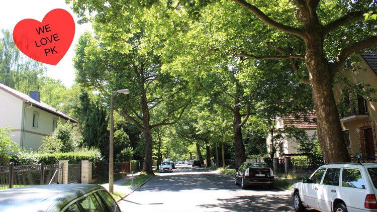 Allee in Wohngebiet mit grünen Bäumen, Autos und Häusern