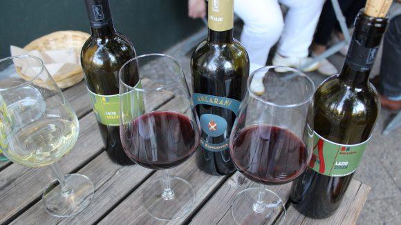 Ein weißer und zweie rote Weine stehen auf dem Holztisch mit Flaschen.