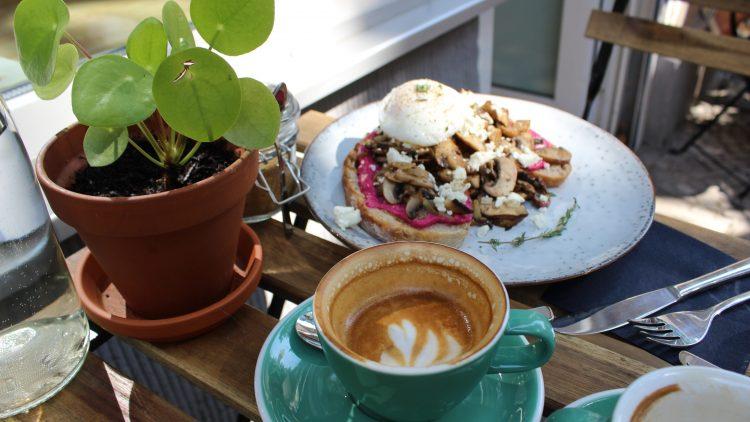 Auf dem Tisch sehen links eine Pflanze und eine Kaffeetasse und dahinter der Toast mit Ei.