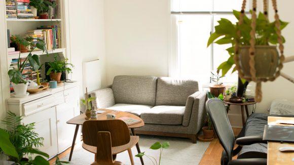 Eine schöne helle Wohnung mit Holzmöbeln und Pflanzen.