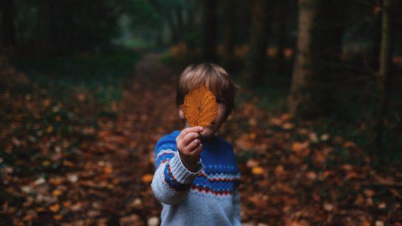 Ein Junge steht auf einem Waldweg und hält sich Laub vors Gesicht