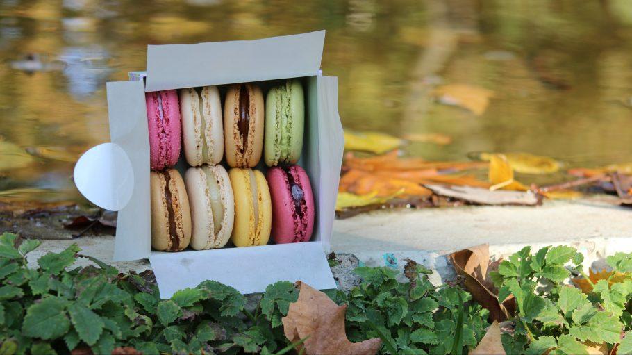 Eine Schachter mit acht Macarons in rosa, weiß, beige, gelb und grün liegt am Rand eines Teichs