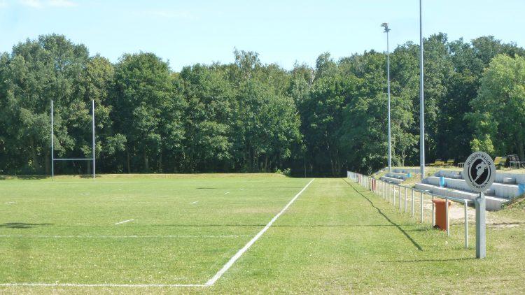 Rasensportplatz mit Flutlicht, Rugby-Toren und Tribünen, im Hintergrund Wald