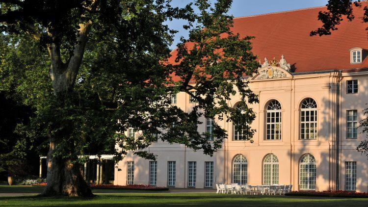 Teil des Schlosses Schönhausen, beige mit rotem Ziegeldach, davor eine Wiese mit einem großen Baum