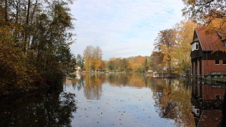 Herbstbäume rund um den Fluss Havel.