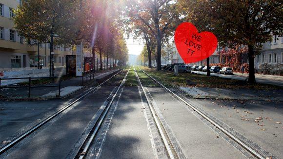 Straßenbahngleise, links und reczhts gesäumt von Bäumen, die gelbes und rotes Herbstlaub tragen.
