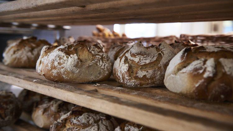 Frisch gebackenes helles Brot in einem Regal