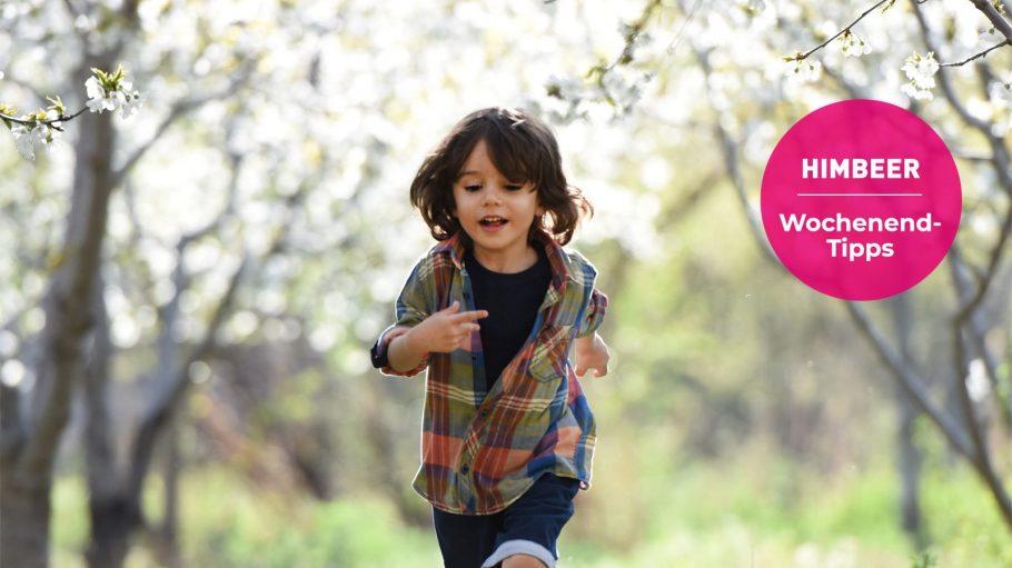 Kleines Kind mit dunklen Haaren läuft durch grünen Garten.
