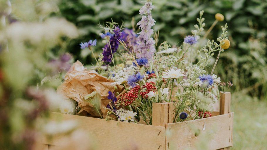 Bunte Blumen in einer Holzkiste
