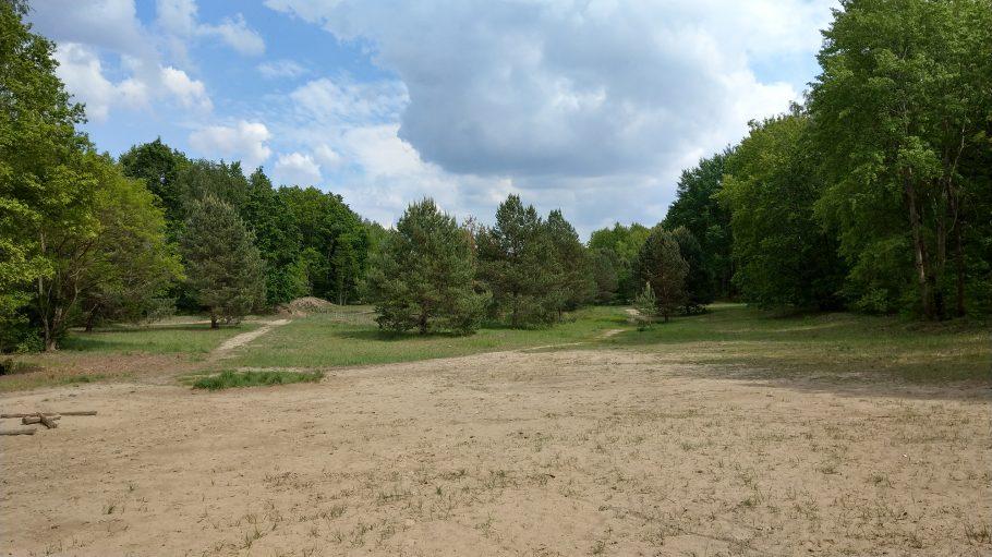Sandfläche, vereinzelt mit Gras, im Hintergrund Wiese mit Bäumen, dahinter Wald, darüber blauer Himmel mit Wolken
