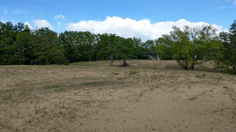 Sandfläche, teils mit Gras bewachsen, im Hintergrund Laubbäume, blauer Himmel