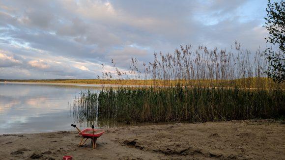 See mit Schilf und Sandufer mit kleiner Schubkarre