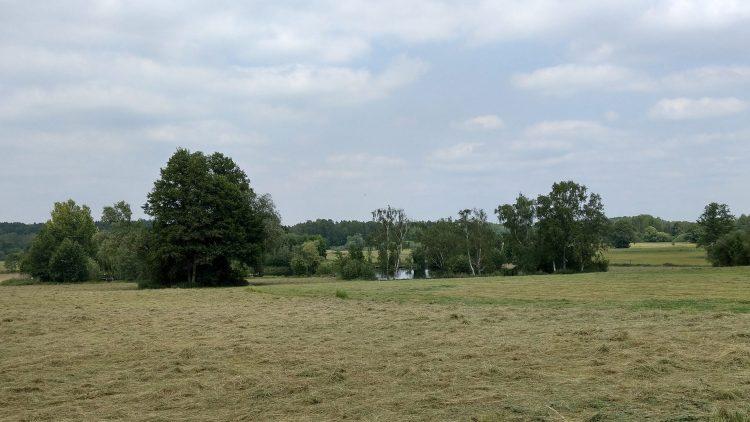 Gemähte Felder, dahinter Wiesen, Bäume und ein kleiner See, wolkiger Himmel