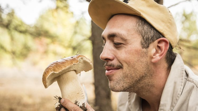Moritz Schmid mit Pilz aus seinem Buch Into the Woods