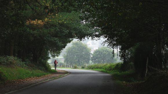 Straße führt aus Wald hinaus, am Waldausgang ein Wanderer mit rotem Rucksack