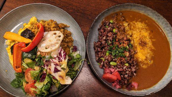 teller mit japanischem Curry und Dry Curry mit Gemüse und Reis