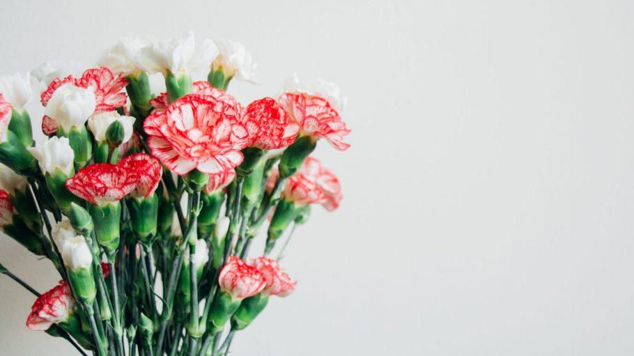 Ein Blumenstrauß vor weißem HIntergrund.