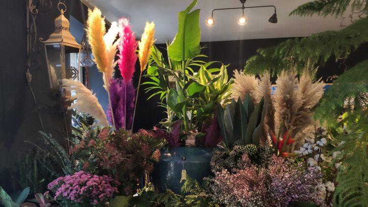Viele bunte Blumen im Laden von Tom Otto.