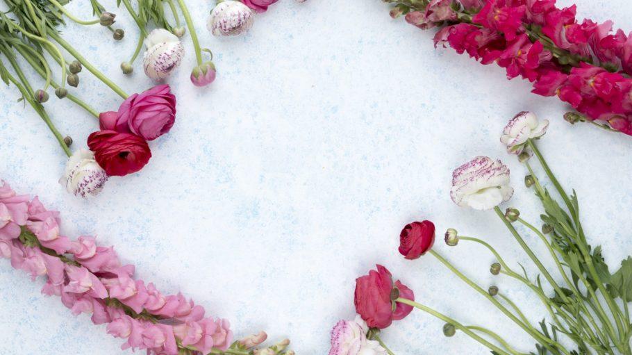Rote, pinke und weiße Blumen in einem Viereck angeordnet.