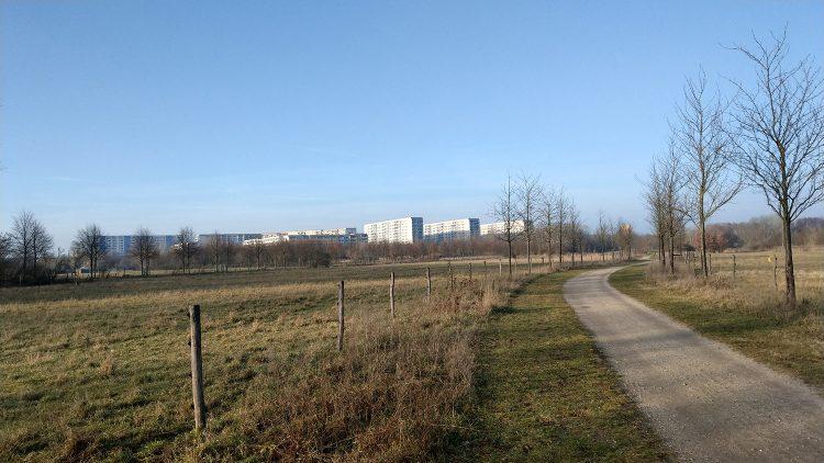 Wuhletal-Wanderweg durch Eichepark mit Weiden und kahlen Bäumen, Siedlung Marzahn-Nord im Hintergrund