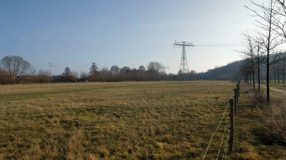 Strommasten führen über die Wiesen und Bäume des Eicheparks hinweg, blauer Himmel