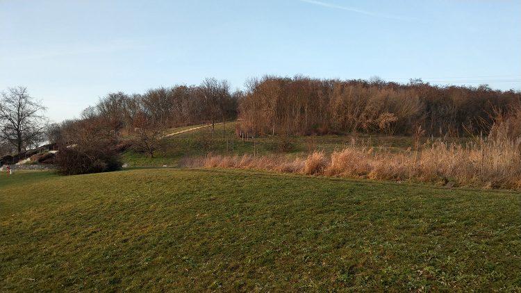 Grüner Hügel mit laublosen Bäumen oben drauf, eine Treppe führt hoch: Kienberg