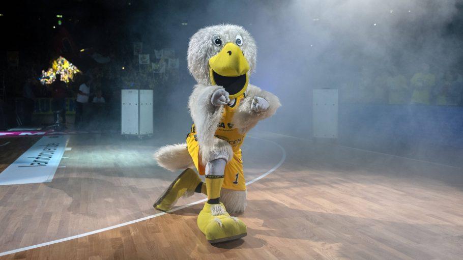 Stofffigur, Alba Berlin-Maskottchen Albatros kniet in Sporthalle mit ausgestreckten Armen