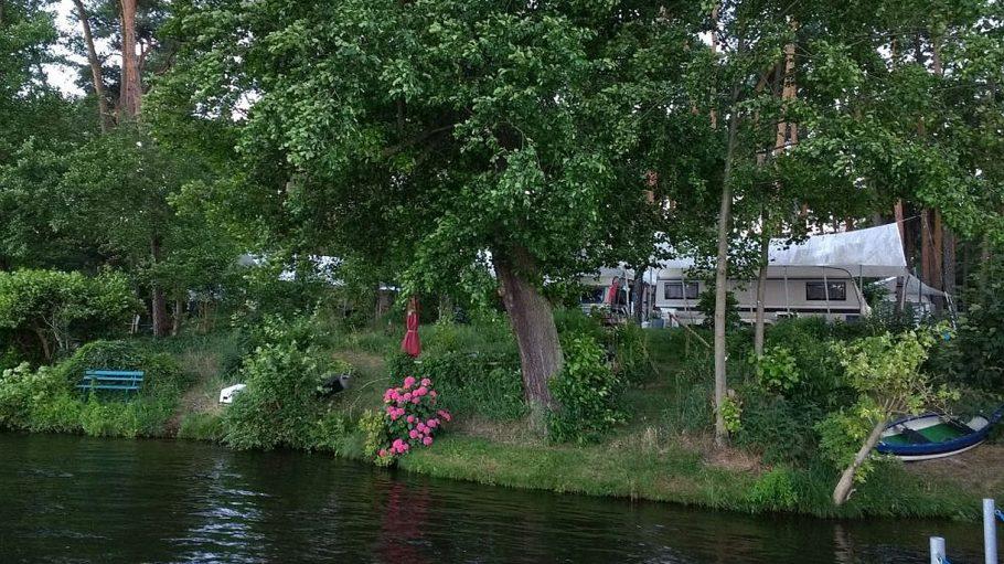 Wohnmobile und Zelte hinter Bäumen, davor See und Böschung