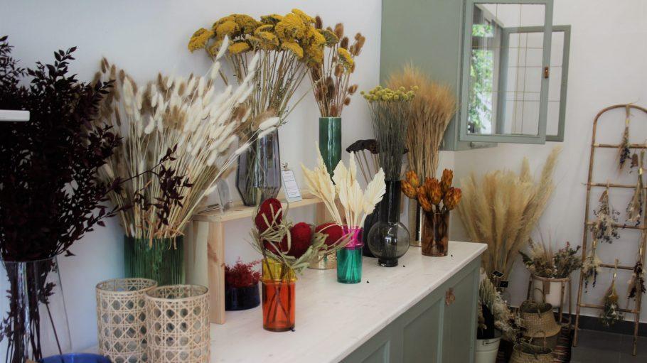 getrocknete Blumen im Schmilblick