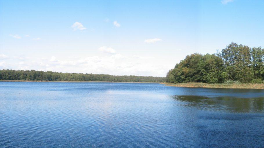 Großer Krinertsee Wasser und gegenüberliegende Ufer mit Bäumen