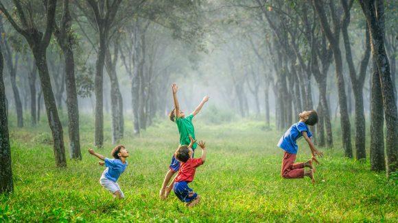 Vier Jungen spielen auf Wiese zwischen Alleebäumen