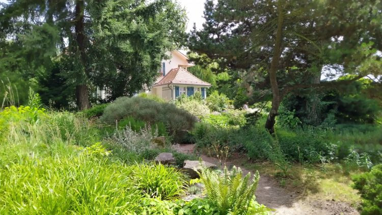 Haus schaut zwischen Bäumen hervor, im Vordergrund ein Steingarten